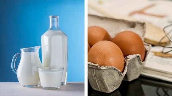 Milk Allergy Egg Allergy