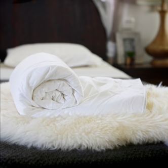 Luxury mulberry silk quilts