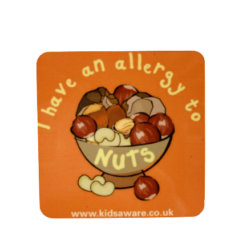 Nuts Allergy Magnets