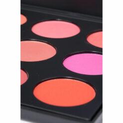 9 Color Compact Blush